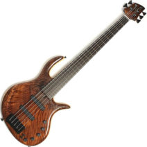 Elrick Gold e-volution 5 strings Redwood top used