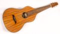 Asher Acoustic Hawaiian Imperial lap steel 0
