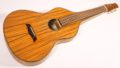 Asher Acoustic Hawaiian Imperial lap steel 1