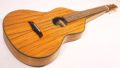 Asher Acoustic Hawaiian Imperial lap steel 2