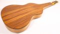 Asher Acoustic Hawaiian Imperial lap steel 6
