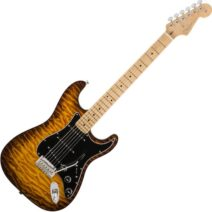 2017 Limited Edition American Professional Mahogany Stratocaster