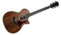 Taylor 524ce LTD Walnut 0