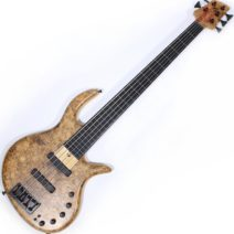2012 Elrick Gold e-volution 5 strings fretless