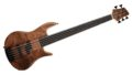 Elrick Gold Icon 5-String Bass Walnut top 0