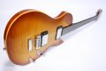 Vigier GV Wood 4