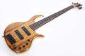 Elrick Gold e-volution 5 Strings Curly Koa Top 2