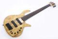 Elrick Gold e-volution Crotched myrtle burl  5 strings 2