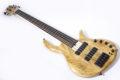 Elrick Gold e-volution Crotched myrtle burl  5 strings 6
