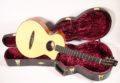 Schertler CP Classical guitar NOS 12