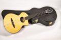 Schertler CP Classical guitar NOS 13