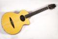 Schertler CP Classical guitar NOS 0