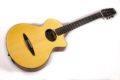 Schertler CP Classical guitar NOS 1