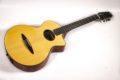 Schertler CP Classical guitar NOS 2