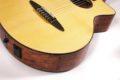 Schertler CP Classical guitar NOS 5