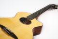 Schertler CP Classical guitar NOS 6