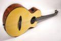 Schertler CP Classical guitar NOS 7