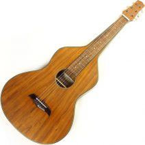 Asher Acoustic Hawaiian Imperial lap steel