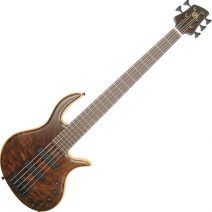Elrick Gold e-volution 5 Strings Figured Claro Walnut Top